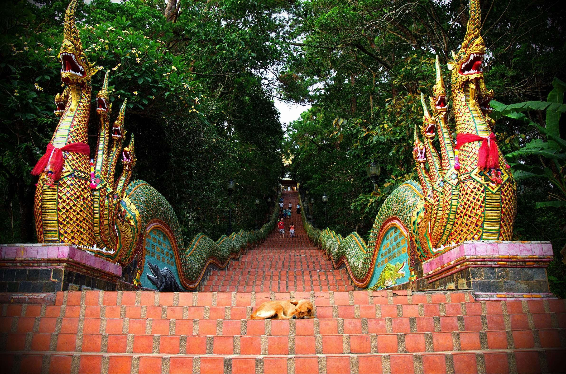 Wat Phrathat Doi Suthep | ph credit youtube.com